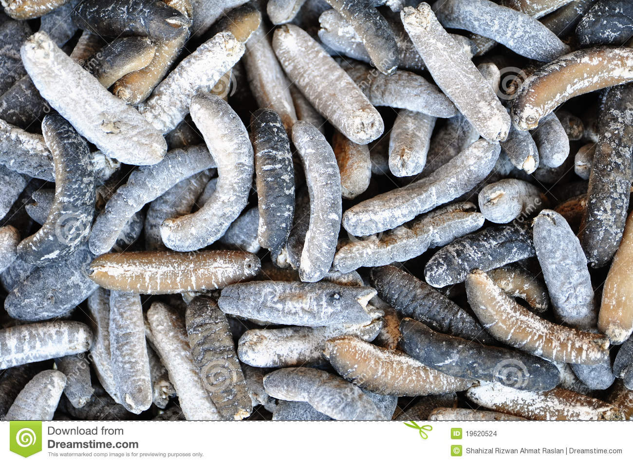 dried sea cucumbers