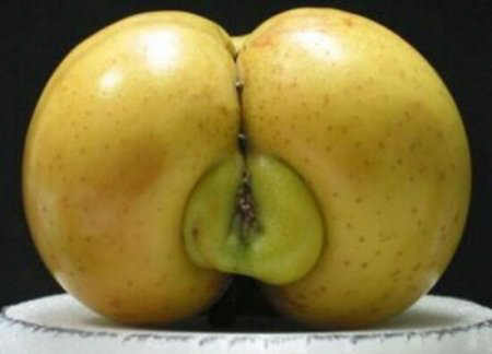 erotic apples