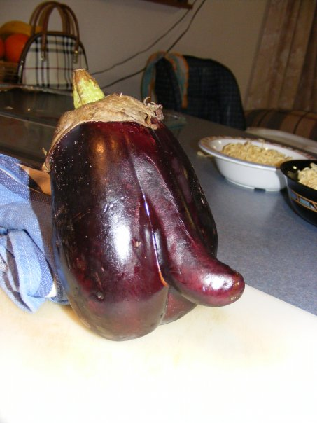 eggplant with penis