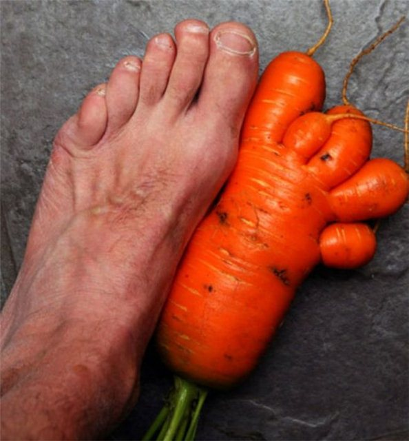 carrot foot