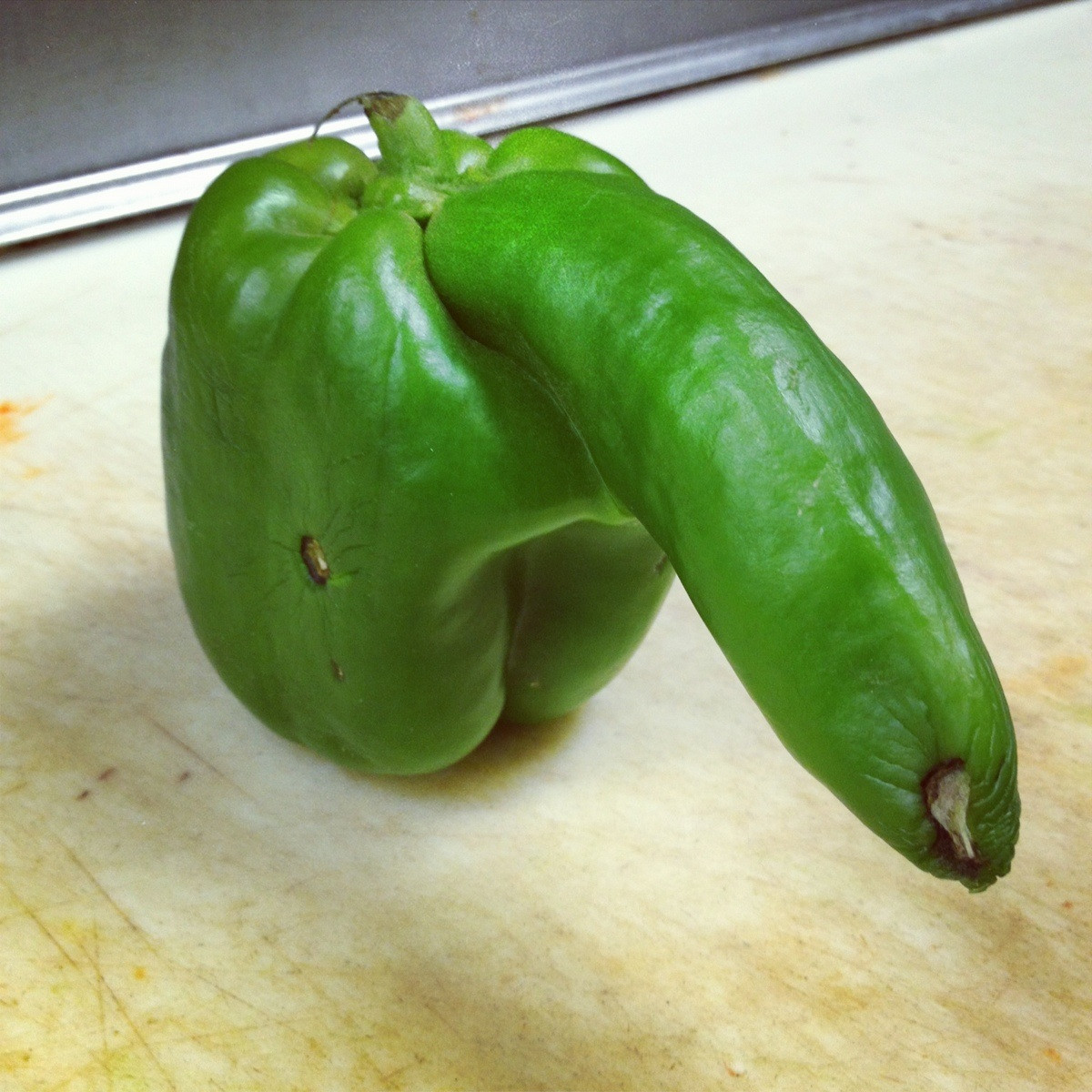 green pepper with large penis