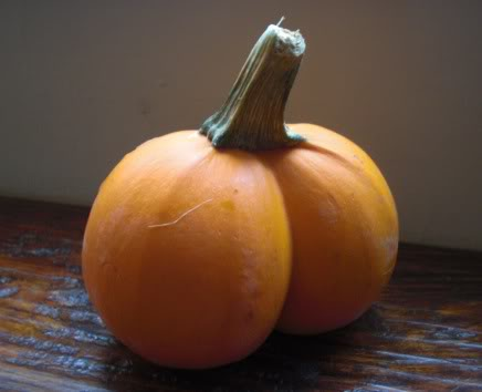 pumpkin bottom