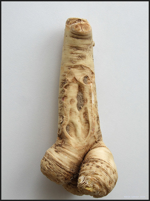 erotic vegetables