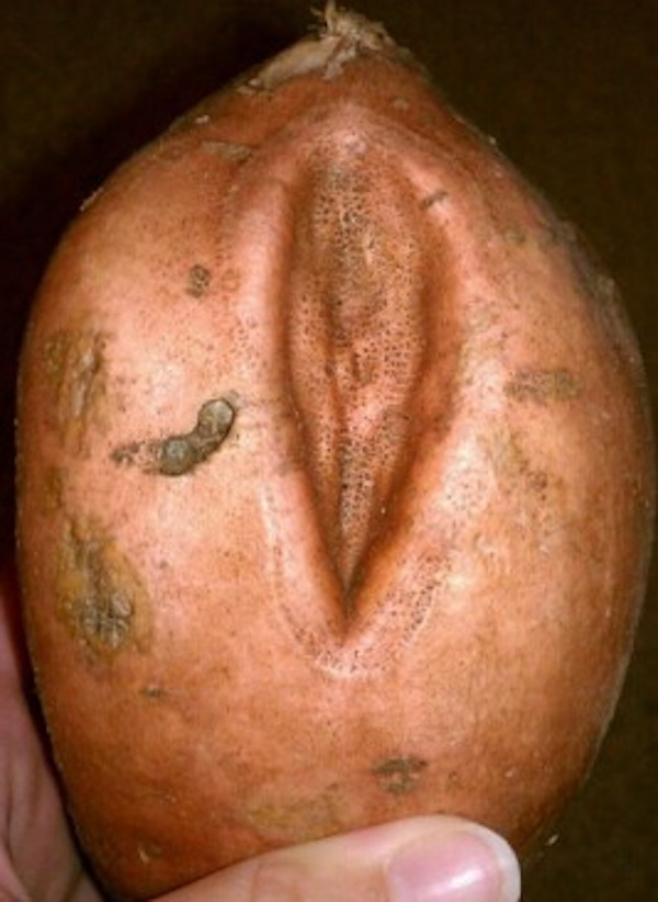 vagina sweet potato